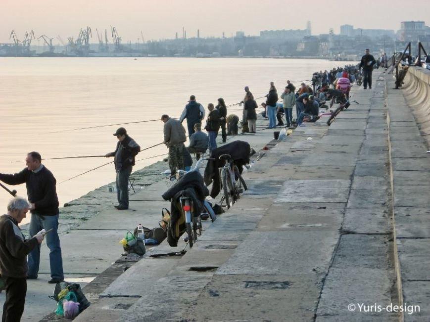 Бердяны массово вышли на рыбалку (ФОТОРЕПОРТАЖ) (фото) - фото 10