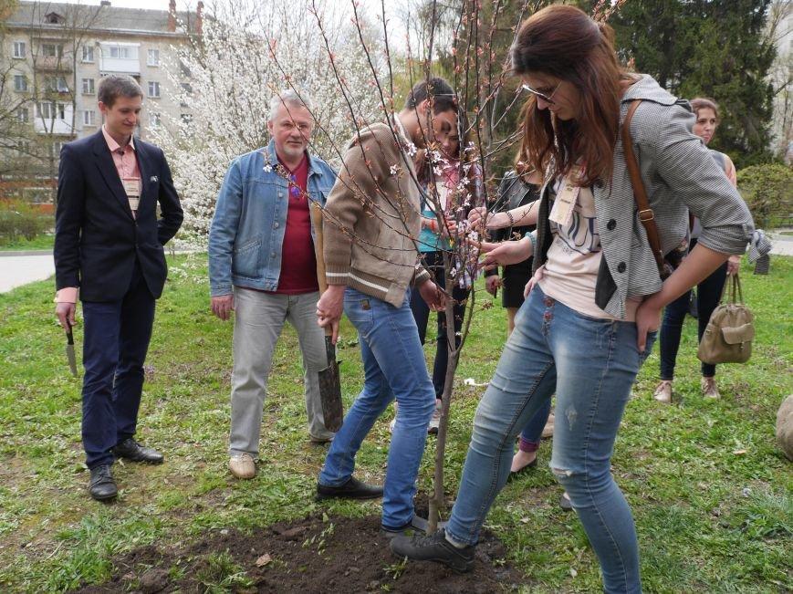 У Тернополі на «Дружбі» висадили дерева миру (Фото) (фото) - фото 1