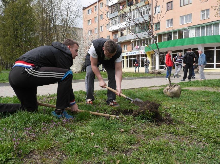 У Тернополі на «Дружбі» висадили дерева миру (Фото) (фото) - фото 2