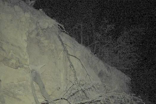 Біля Ужгорода під час незаконного видобутку каменю помер чоловік (фото) - фото 1