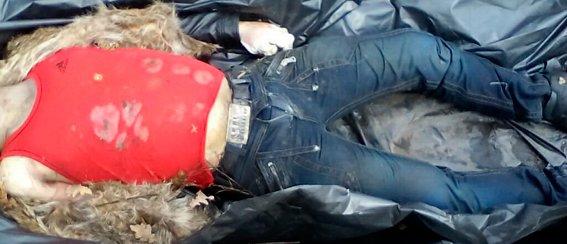 В Тетереве обнаружили труп мужчины: личность погибшего устанавливается (фото) - фото 1