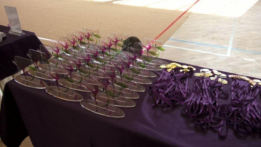У Хмельницькому змагалися маленькі гімнастики (Фото) (фото) - фото 5