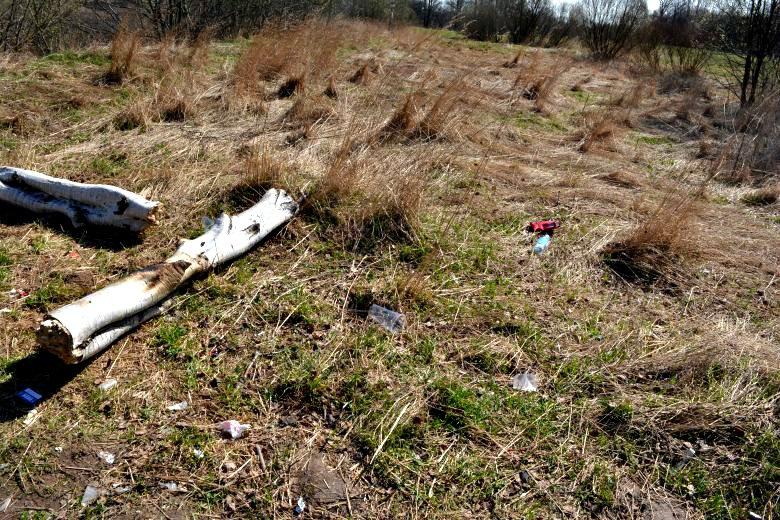 Фотофакт: Новополоцк до и после всемирного дня уборки, фото-9