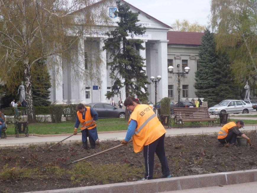 В центре Красноармейска (Покровска) работа кипит: клумбы облагораживают, розы подрезают. Дыхание весны на лицо (фото) - фото 2