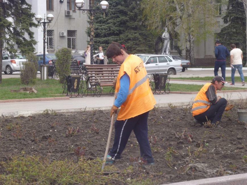 В центре Красноармейска (Покровска) работа кипит: клумбы облагораживают, розы подрезают. Дыхание весны на лицо (фото) - фото 3