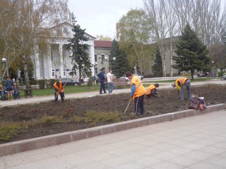 В центре Красноармейска (Покровска) работа кипит: клумбы облагораживают, розы подрезают. Дыхание весны на лицо (фото) - фото 1