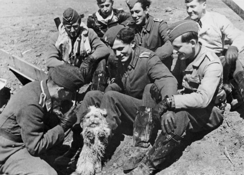 gunther_rall_with_his_comrades_luftwaffe_aces_dog_unit_mascot_jg_52_kerth_1943.639hq6nf9cw0s8gss4cskc88s.ejcuplo1l0oo0sk8c40s8osc4.th