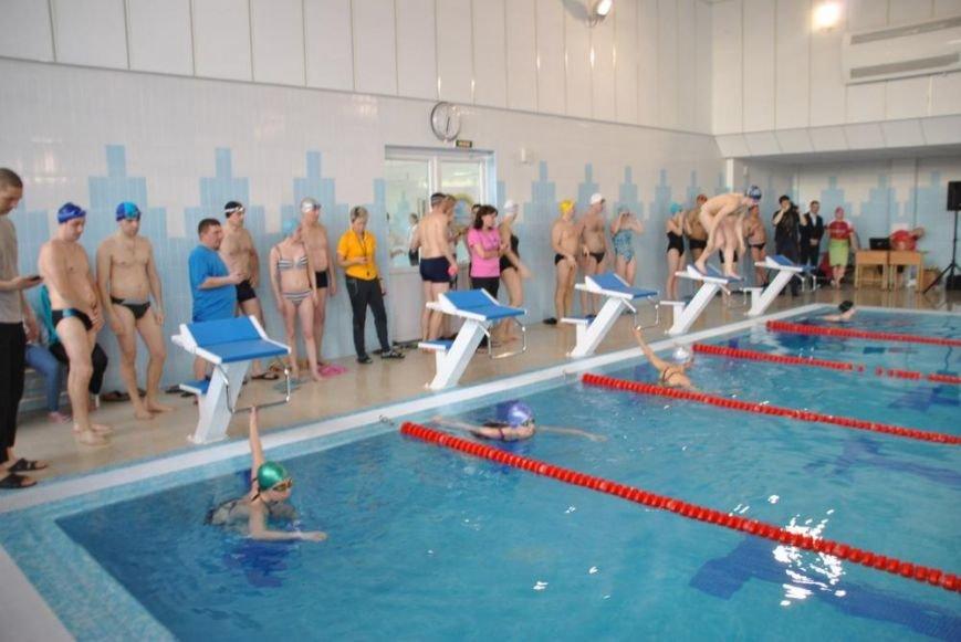 Трудовые коллективы Пушкинского района выяснили, кто из них плавает быстрее всех (фото) - фото 1