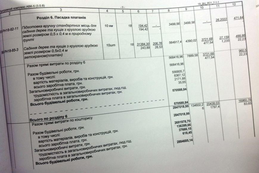 ДК «Молодежный» закупил платаны по цене, в 2 раза выше рыночной (ФОТО), фото-3