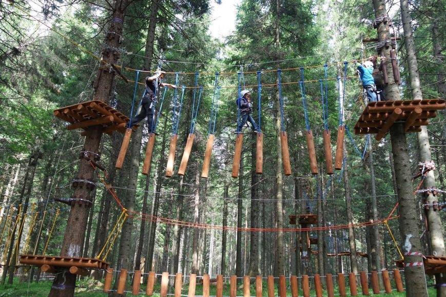 У Черкаському «Сосновому бору» створять новий спортивно-мотузковий комплекс (ФОТО), фото-3
