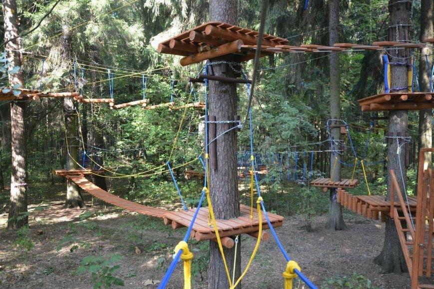 У Черкаському «Сосновому бору» створять новий спортивно-мотузковий комплекс (ФОТО), фото-4