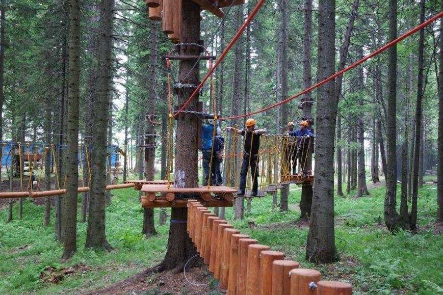 У Черкаському «Сосновому бору» створять новий спортивно-мотузковий комплекс (ФОТО), фото-1