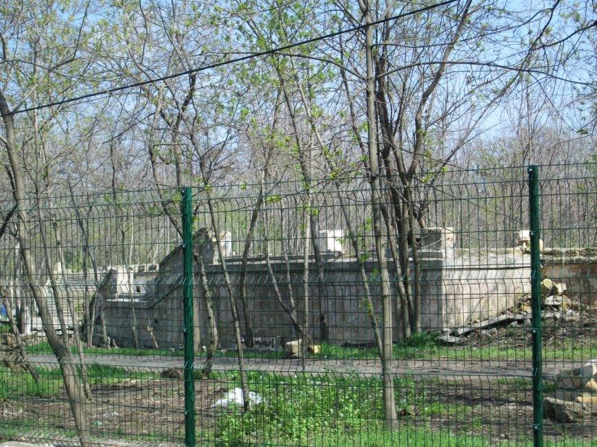 0a733a945ff3f982a0003014fc8056c5 Одесский «Зеленый театр» позеленеет