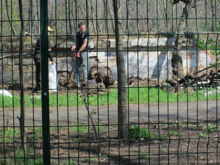 29972307895024087f5caf4a86094bd3 Одесский «Зеленый театр» позеленеет