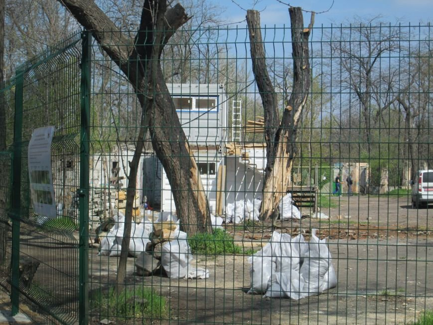 b0545f4f8b0a6f323044a2245264dba5 Одесский «Зеленый театр» позеленеет