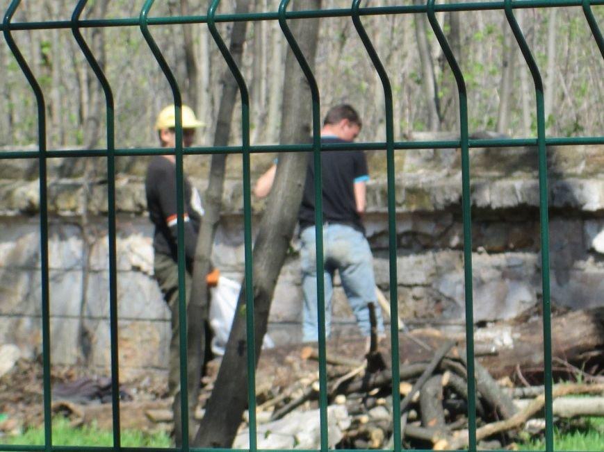 b1bf9c83d01700c6afa744a36024750a Одесский «Зеленый театр» позеленеет