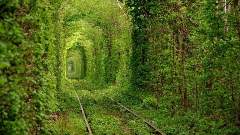 tunel koxannja