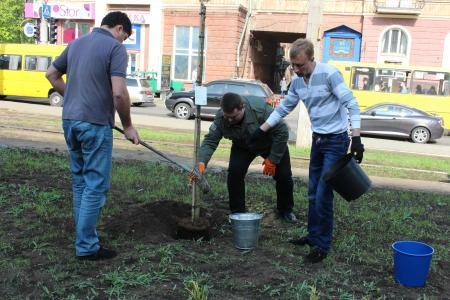 В Днепропетровске зацветут сакуры (ФОТО), фото-3