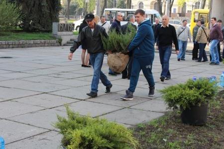 В Днепропетровске зацветут сакуры (ФОТО), фото-6