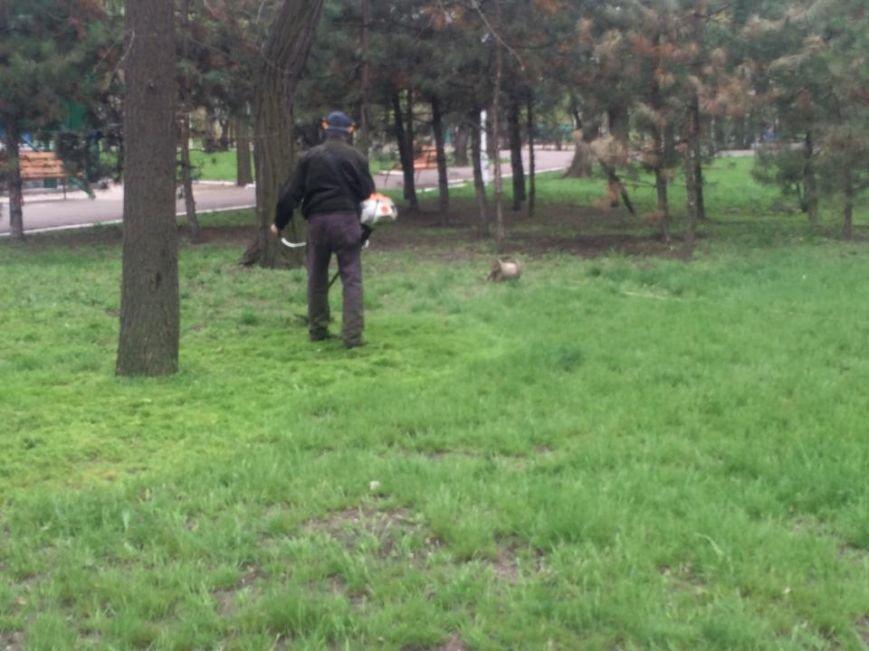 В Мариуполе Городской сад готовят к открытию: красят, белят и устанавливают новые лавочки (ФОТОРЕПОРТЖ, ВИДЕО), фото-15