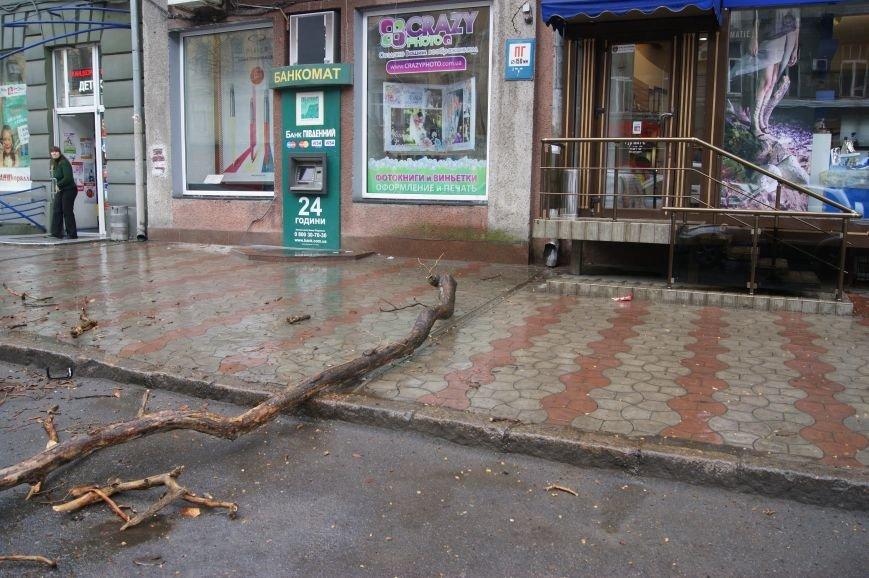 В центре Одессы огромная ветка рухнула на автомобильную парковку (ФОТО) (фото) - фото 1