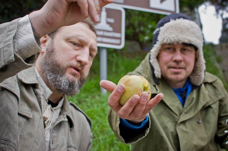 Ялтинцы ответили блогеру Варламову фотопроектом о Приморском парке, фото-8