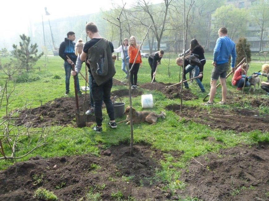 """""""Зеленые легкие Криворожья"""": студенты внесли вклад в сохранение чистой окружающей среды (ФОТО), фото-2"""