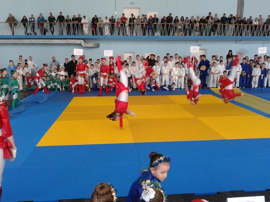 В Херсоне состоялся Чемпионат Украины по дзюдо на кубок мэра Херсона (фото) (фото) - фото 3