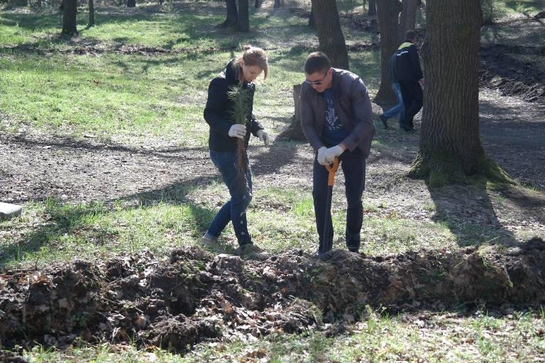 У Черкасах висадили близько двох тисяч  молодих дерев (ФОТО), фото-3