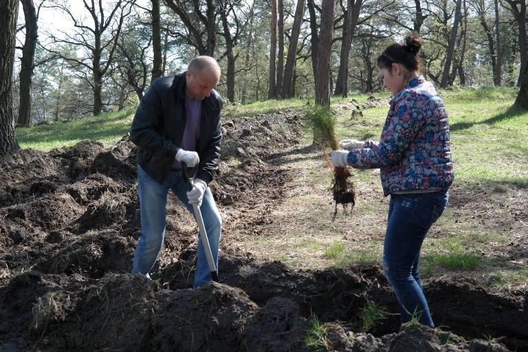 У Черкасах висадили близько двох тисяч  молодих дерев (ФОТО), фото-4