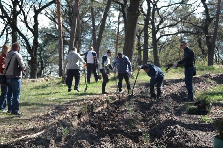 У Черкасах висадили близько двох тисяч  молодих дерев (ФОТО), фото-1