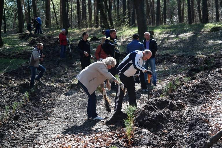 У Черкасах висадили близько двох тисяч  молодих дерев (ФОТО), фото-2