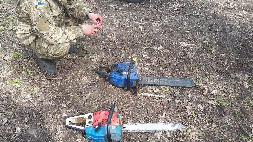 В заповедной зоне лесная охрана задержала незаконных дровосеков, фото-1