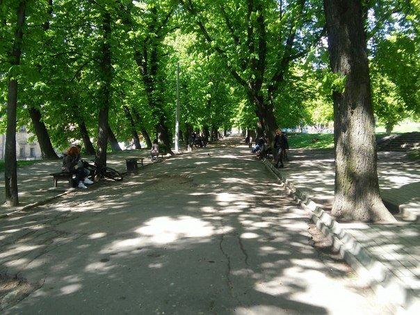 Громадський простір із вшанування пам'яті Небесної Сотні облаштують за ідеєю Віри Савченко (ФОТО) (фото) - фото 1