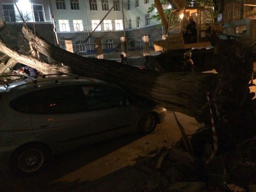 В центре Ростова упавшее дерево раздавило припаркованный Chevrolet, фото-1