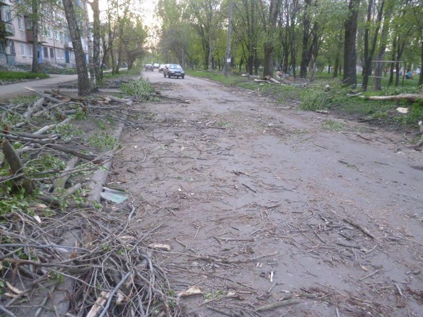 Опиловка в Красноармейске (Покровске): все завалено ветвями, ни проехать, ни пройти (фото) - фото 3