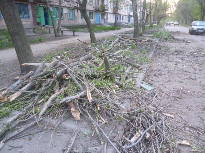 Опиловка в Красноармейске (Покровске): все завалено ветвями, ни проехать, ни пройти (фото) - фото 4