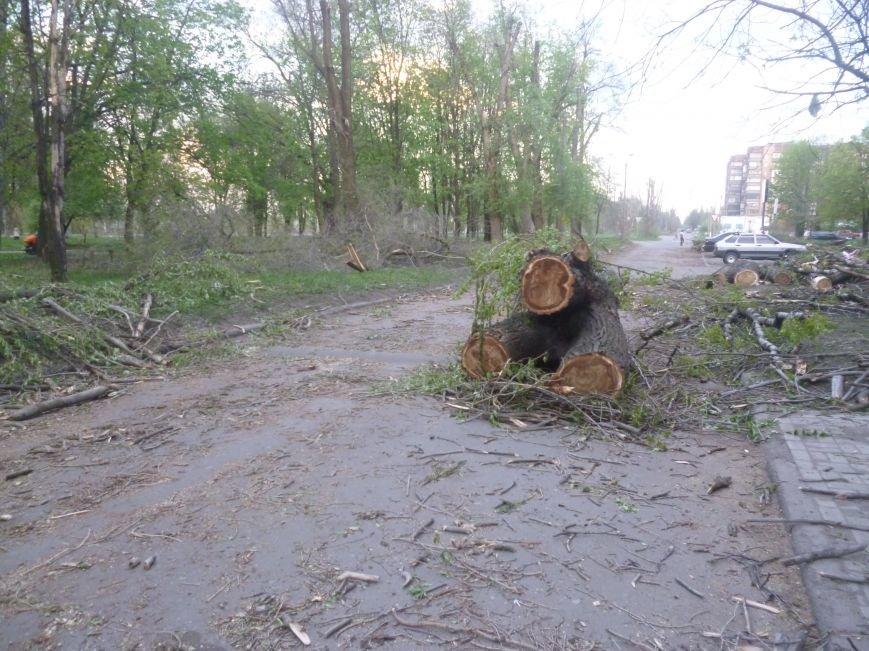 Опиловка в Красноармейске (Покровске): все завалено ветвями, ни проехать, ни пройти (фото) - фото 1