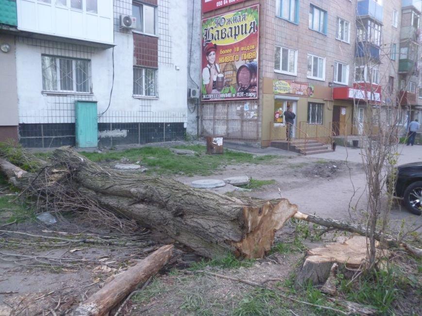 Опиловка в Красноармейске (Покровске): все завалено ветвями, ни проехать, ни пройти (фото) - фото 5