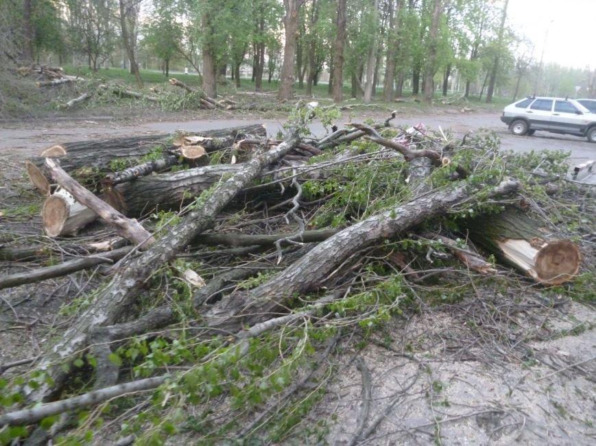 Опиловка в Красноармейске (Покровске): все завалено ветвями, ни проехать, ни пройти (фото) - фото 6