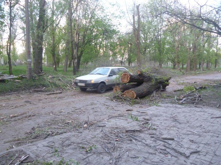 Опиловка в Красноармейске (Покровске): все завалено ветвями, ни проехать, ни пройти (фото) - фото 11