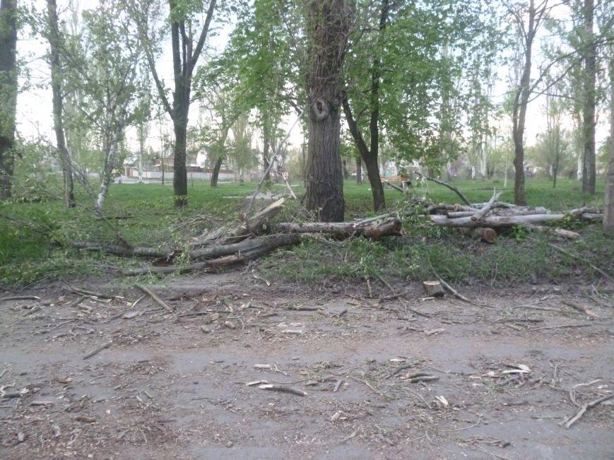 Опиловка в Красноармейске (Покровске): все завалено ветвями, ни проехать, ни пройти (фото) - фото 10