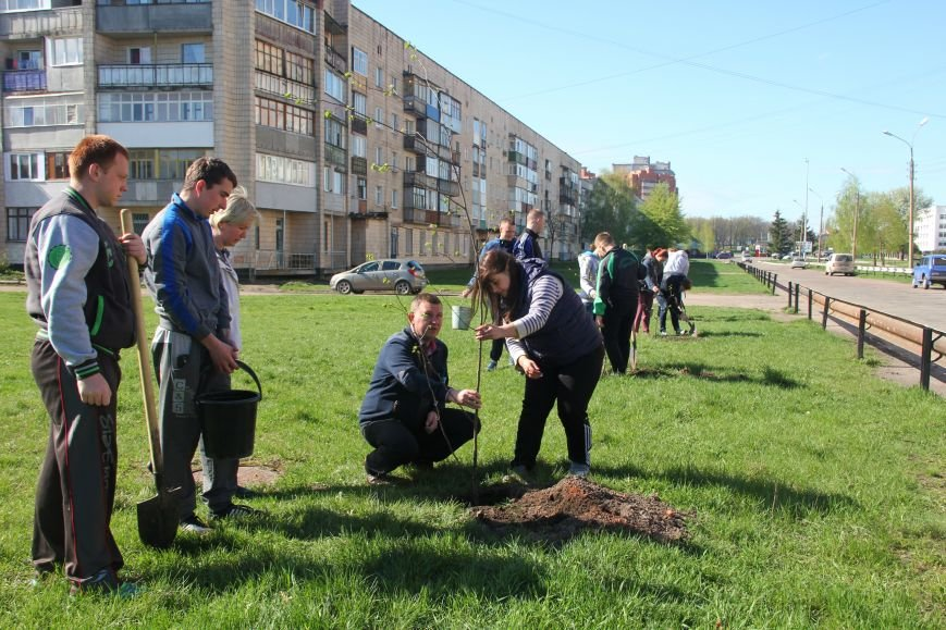 Студенти СНАУ розробили та втілюють проект озеленення скверу в Сумах (фото) - фото 1