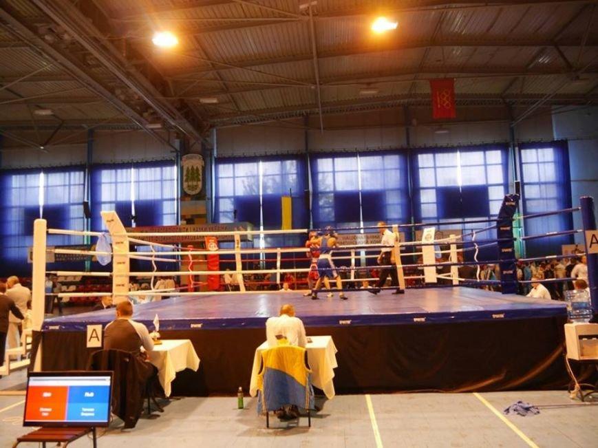 Олександр Усик в Ужгороді відкривав Чемпіонат України з боксу: фото, фото-5