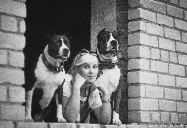 Пятерка обсуждаемых предложений законопроекта «Об обращении с животными» по версии новополочан и полочан (фото) - фото 5