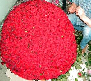 «Расстроенная свадьба»… Или каким цветам не место на торжестве влюбленных сердец (фото) - фото 1