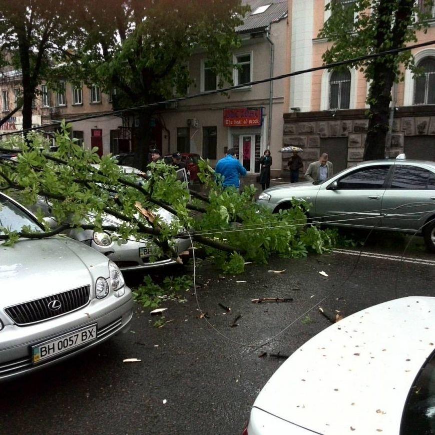 dcca765d91428f3966d56af0cbae478d В центре Одессы ветки деревьев рухнули на проезжающие машины