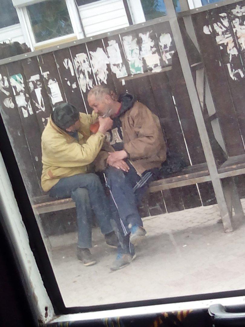 Екстремальна перукарня: в Ужгороді стрижуть на автобусній зупинці, фото-1