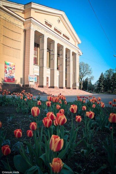 Минутка красоты. Макеевские тюльпаны (фото) (фото) - фото 10