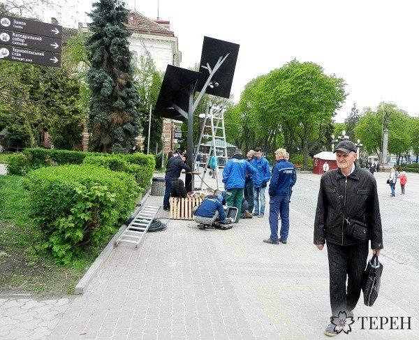 """У Тернополі на """"сонячному дереві"""" встановлюють камеру відеоспостереження (фото) (фото) - фото 2"""